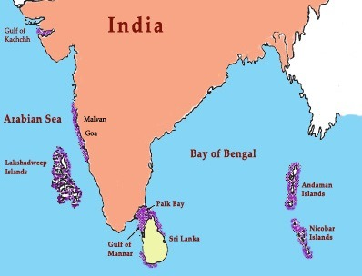 Coral-Reefs-in-India