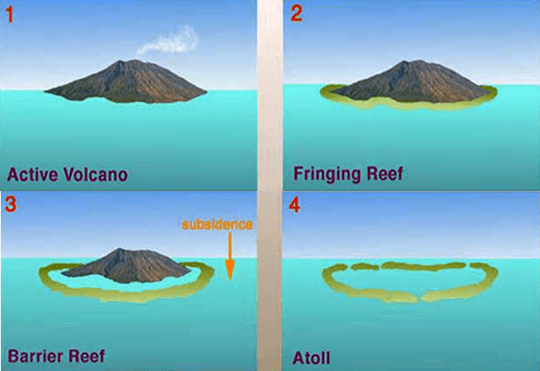 Darwin-theory-coral-reef